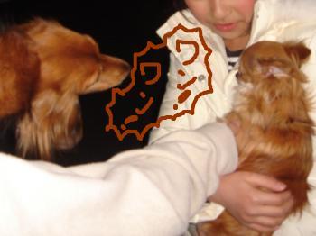 snap_akiyu2_201134124940.jpg