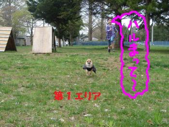 snap_akiyu2_201151134010.jpg