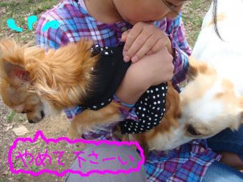 snap_akiyu2_20115114330.jpg