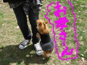 snap_akiyu2_201151184616.jpg