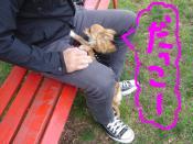 snap_akiyu2_20115119122.jpg
