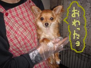 snap_akiyu2_201156131156.jpg