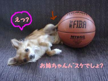 snap_akiyu2_201164215752.jpg