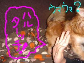 snap_akiyu2_20116483131.jpg