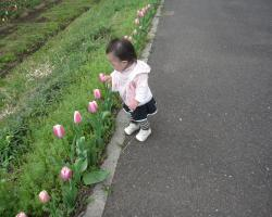 IMG_8954_convert_20100405104411.jpg