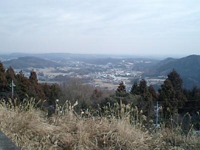 20110208裏松.JPG