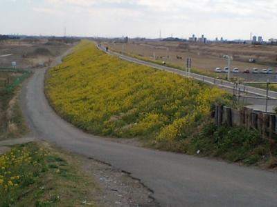 20110327荒川2.JPG