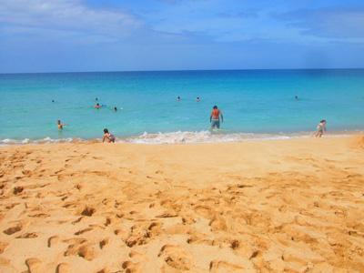 ハワイ ワイメアビーチパーク