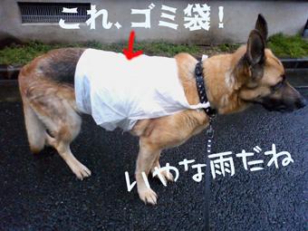 ゴミ袋コート