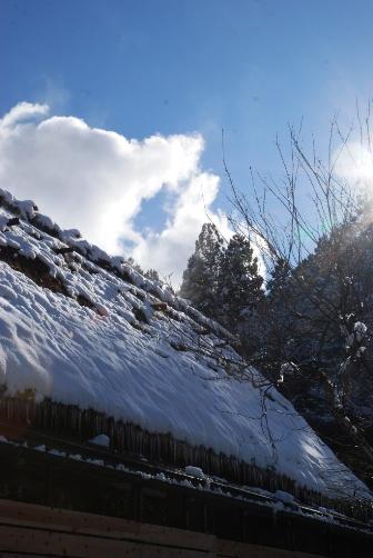雪の翌る日