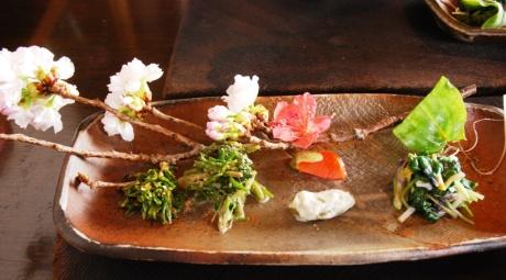 4 桜とカタクリ