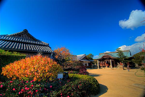 祇園神社02