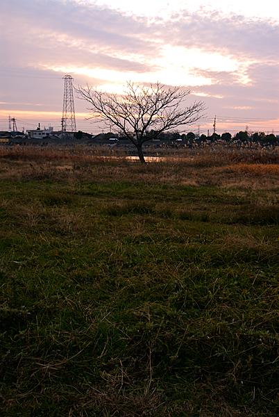 旭川014
