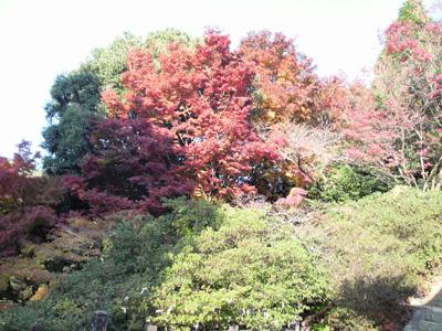 08-arita-aki-tougeiiti14.jpg