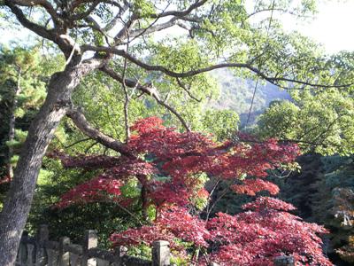 08-arita-aki-tougeiiti15.jpg