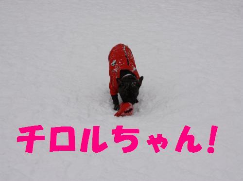 IMG_8503_convert_20091226173747.jpg