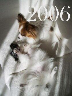 200902122b.jpg