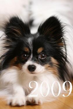 200902127b.jpg