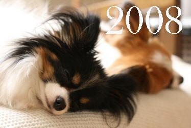 200902129.jpg