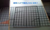 20110409113822.jpg