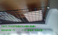 20110409115431.jpg