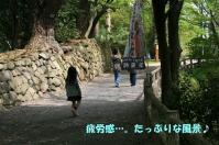 IMG_0019.jpg