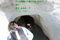 IMG_8928.jpg