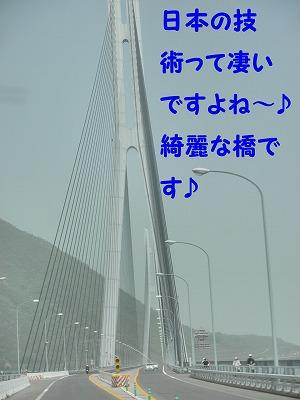 P5020261.jpg