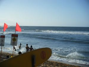 haleiwa alli beach