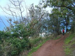 kealia trail 6