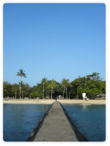 kuhio beach333
