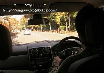drive2.jpg