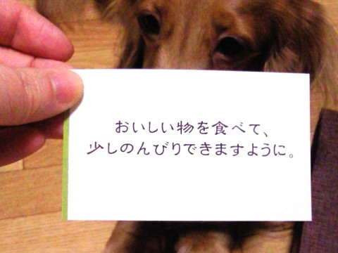 NEC_0758.jpg