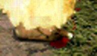 LinC0248a.jpg