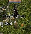 LinC2885.jpg