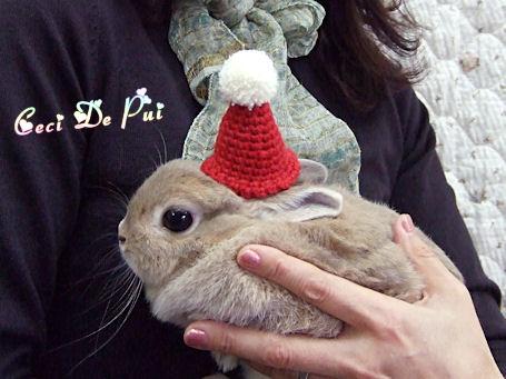 deka-santa-bousi-01_20081203224816.jpg