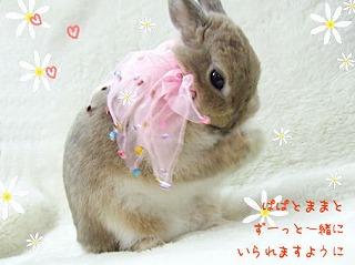 s-deka-birthday-04.jpg