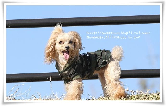 20111125_9805.jpg