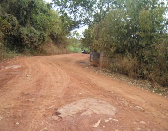 Busuanga03151131