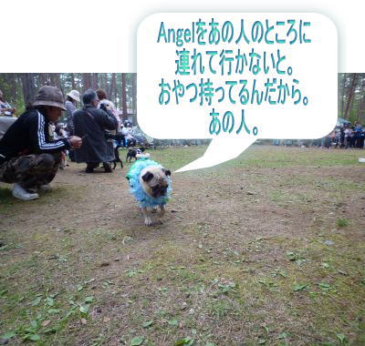 image1_20100605155349.jpg