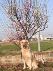 2011_0226_02.jpg