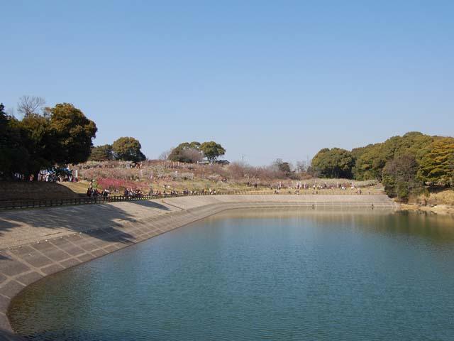 2011_0226_33.jpg