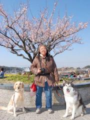 2011_0226_37.jpg