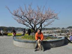 2011_0226_40.jpg