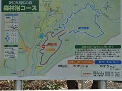 2011_0315_03.jpg