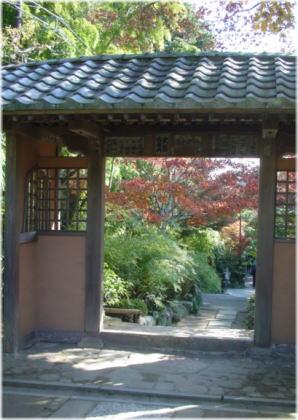 鎌倉DSC07435
