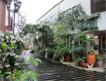 立川gardencraftsDSC02567