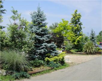 zoony garden
