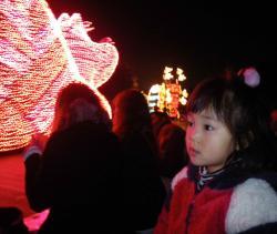 2010-11-4-38.jpg