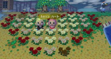 ハートのバラ